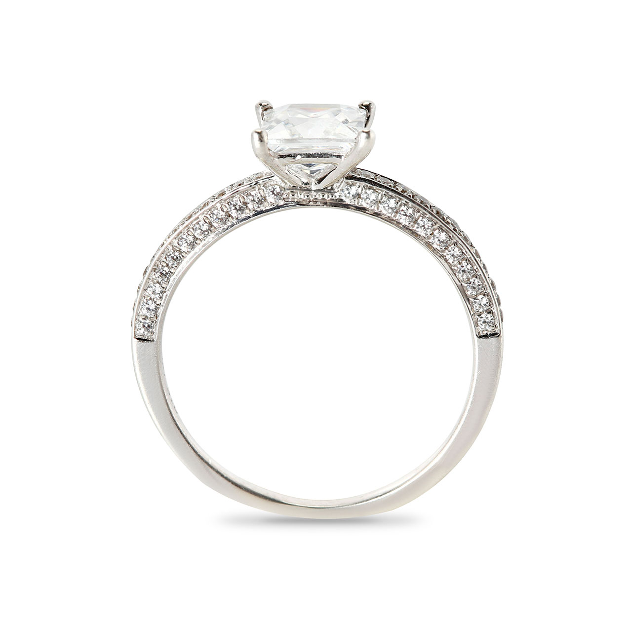 Princess Cut Pave Setting On The Inner Side of The Diamond Engagement Ring Band