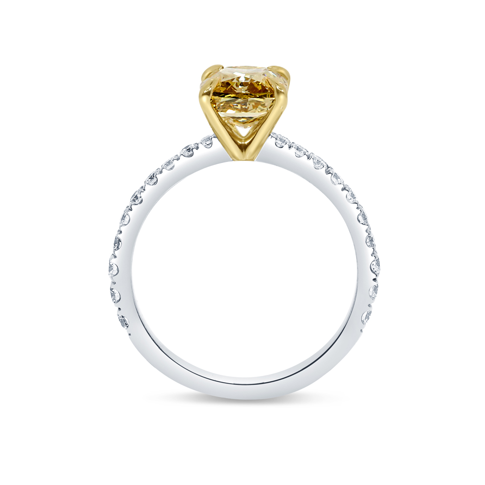 Yellow Diamond Cushion Micro Setting Engagement Ring